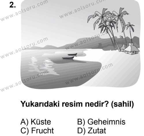 Seçmeli Yabancı Dil Almanca 4 Dersi 2013 - 2014 Yılı 1. Dönem Sınav Soruları 2. Soru