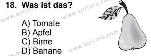 Seçmeli Yabancı Dil Almanca 6 Dersi 2014-2015 Yılı 1. Dönem Sınavı 18. Soru