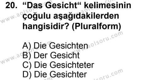 Seçmeli Yabancı Dil Almanca 7 Dersi 2013-2014 Yılı 1. Dönem Sınavı 20. Soru