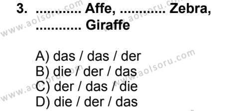 Seçmeli Yabancı Dil Almanca 7 Dersi 2013 - 2014 Yılı 3. Dönem Sınav Soruları 3. Soru