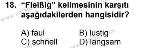 Seçmeli Yabancı Dil Almanca 8 Dersi 2014-2015 Yılı 1. Dönem Sınavı 18. Soru