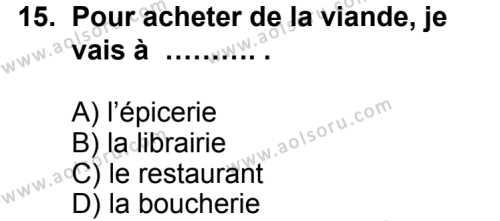 Seçmeli Yabancı Dil Fransızca 3 Dersi 2014-2015 Yılı 1. Dönem Sınavı 15. Soru