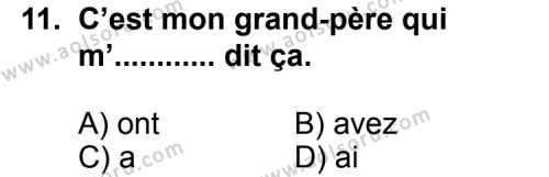Seçmeli Yabancı Dil Fransızca 5 Dersi 2013-2014 Yılı 1. Dönem Sınavı 11. Soru