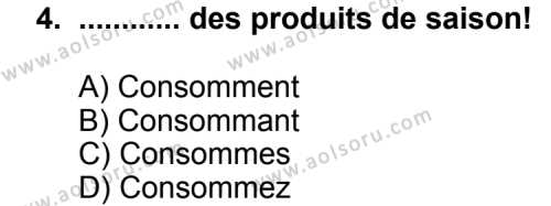 Seçmeli Yabancı Dil Fransızca 8 Dersi 2013 - 2014 Yılı 3. Dönem Sınav Soruları 4. Soru