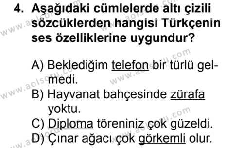 Türk Dili ve Edebiyatı 1 Dersi 2016 - 2017 Yılı 1. Dönem Sınav Soruları 4. Soru