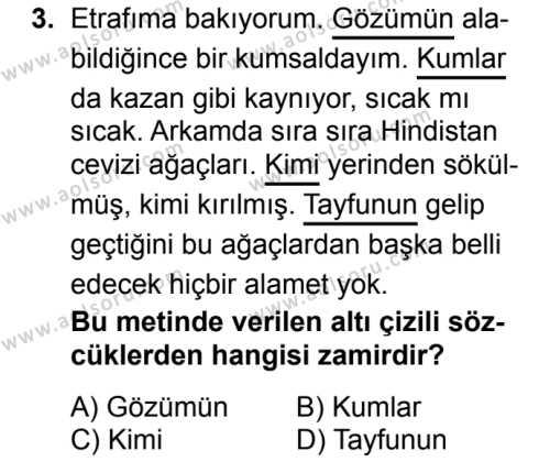 Türk Dili ve Edebiyatı 2 Dersi 2017 - 2018 Yılı 2. Dönem Sınavı 3. Soru