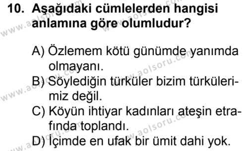 Türk Dili ve Edebiyatı 4 Dersi 2018-2019 Yılı 1. Dönem Sınavı 10. Soru