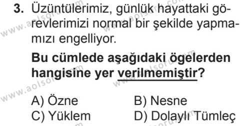 Türk Dili ve Edebiyatı 5 Dersi 2018 - 2019 Yılı 2. Dönem Sınavı 3. Soru