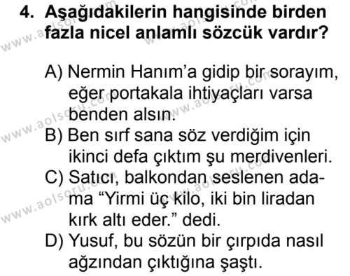Türk Dili ve Edebiyatı 7 Dersi 2018 - 2019 Yılı Ek Sınav Soruları 4. Soru