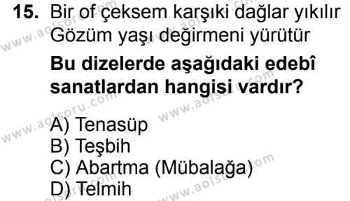 Türk Edebiyatı 1 Dersi 2015-2016 Yılı 1. Dönem Sınavı 15. Soru