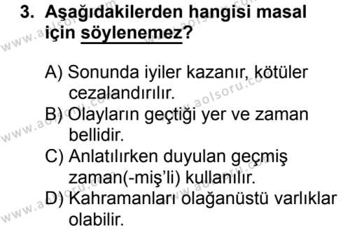Türk Edebiyatı 2 Dersi 2017 - 2018 Yılı Ek Sınavı 3. Soru